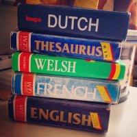 słowniki do języków obcych